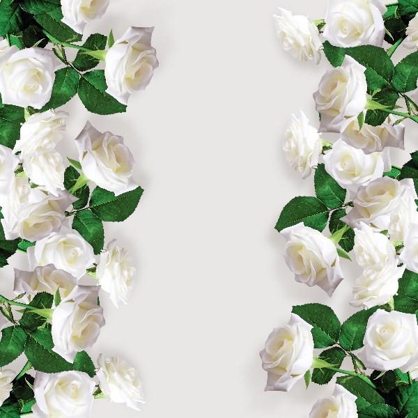 Цветы_254