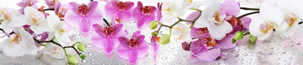 S_цветы_087