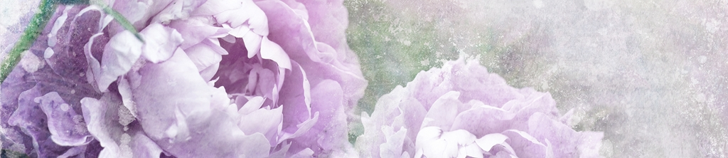 S_цветы_200