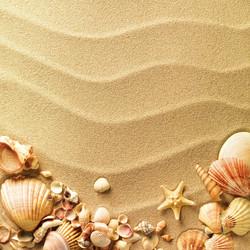 Морская тема_189