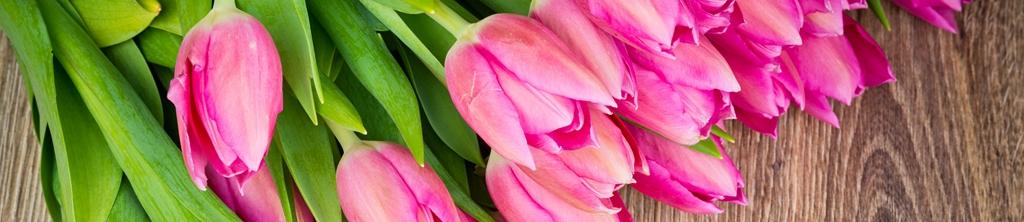 S_цветы_133