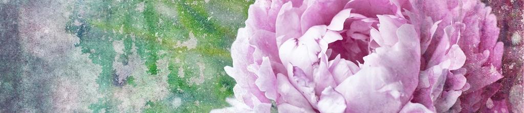 S_цветы_145