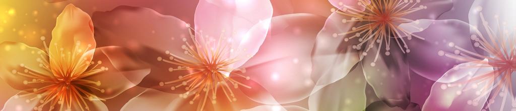 S_цветы_297