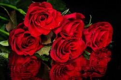Цветы_044