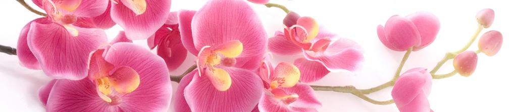 S_цветы_229