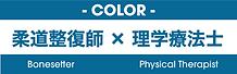 柔道整復師×理学療法士ロゴ.png