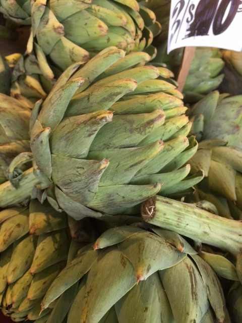 Artichoke a fiber-rich food