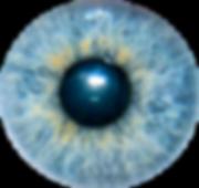 Iris_oeil_1.png