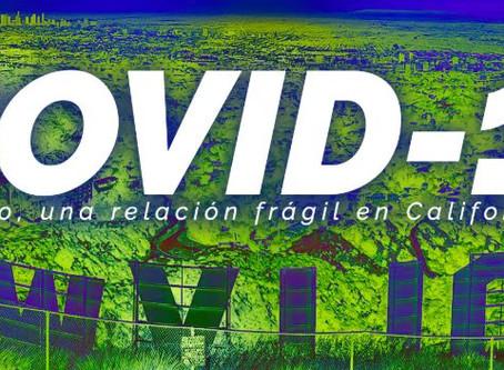 COVID-19 y empleo, una relación muy frágil en California