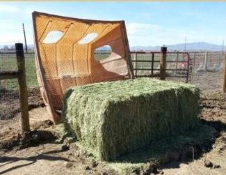 Big Bale Barn.JPG