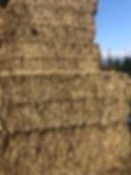 Feeder Hay Stack.jpg