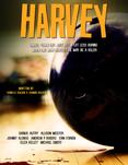 Harvey2.png