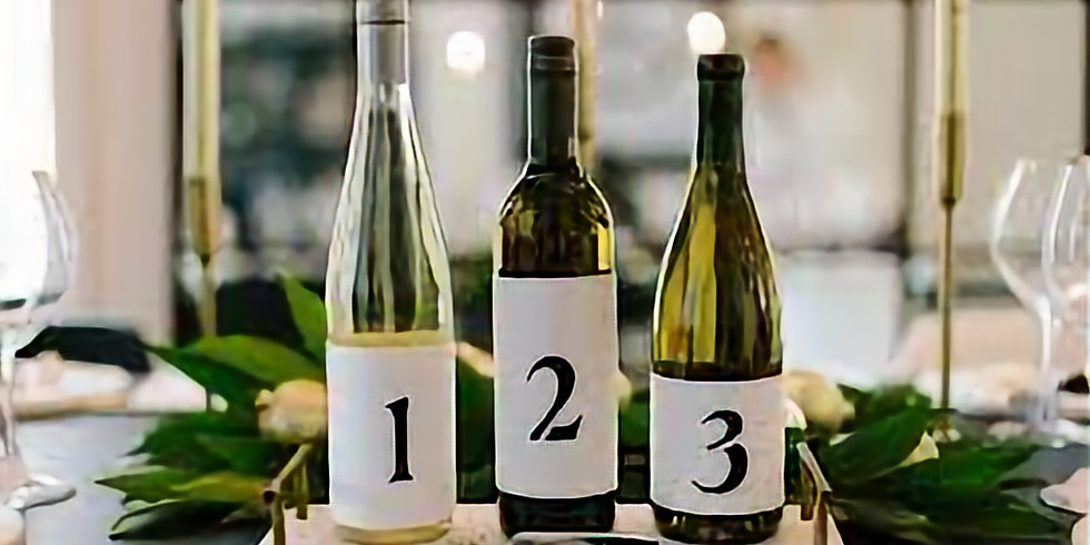 Blind Wine Tasting w/ Book Club to Follow!