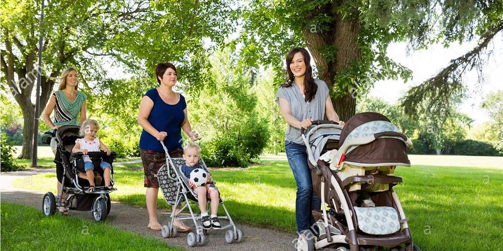 Baby & Toddler Stroller Walk Playdate in Parr Park