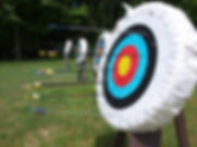 Archery Board nature