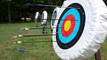 Newport Pagnell Archers Newsletter May 2017