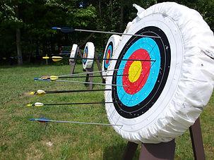 Archery Board nature