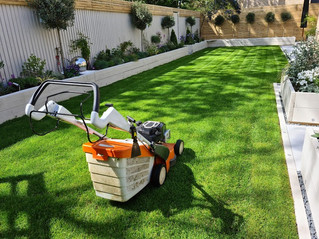 12th May 2021 - I tend not to post photos too often of lawns, due to fear of boring people ...