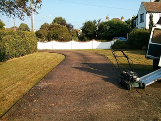 August 2013 ... A hot summer in Herne Bay. PAULS LAWNS - The Reliable Garden Service of Herne Bay