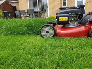 MAY 2019 - Some lawns are growing very fast. This is the growth after just a fortnight - www.paulsla