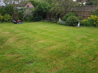 May 2018 - First cut of the year for a customer who has had an extended stay in hospital. Lawn was v