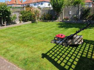 JULY 2019 - First visit for a new customer whose lawn had not been cut for a few weeks. With the wet