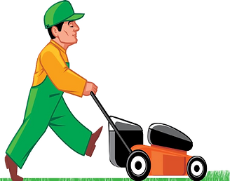 PAULS LAWNS : Lawn Mowing, Grass cutting, Herne Bay Gardener, Whitstable Gardener, Gardening Service