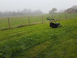 April 2018 - Foggy first cut for a new customer today