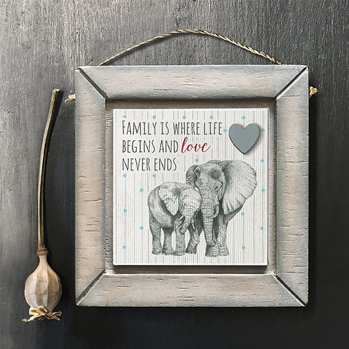 Family Elephant picture
