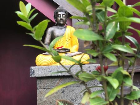 Meditation - Der Einstieg