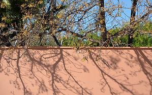 1 marrakech muur.jpg