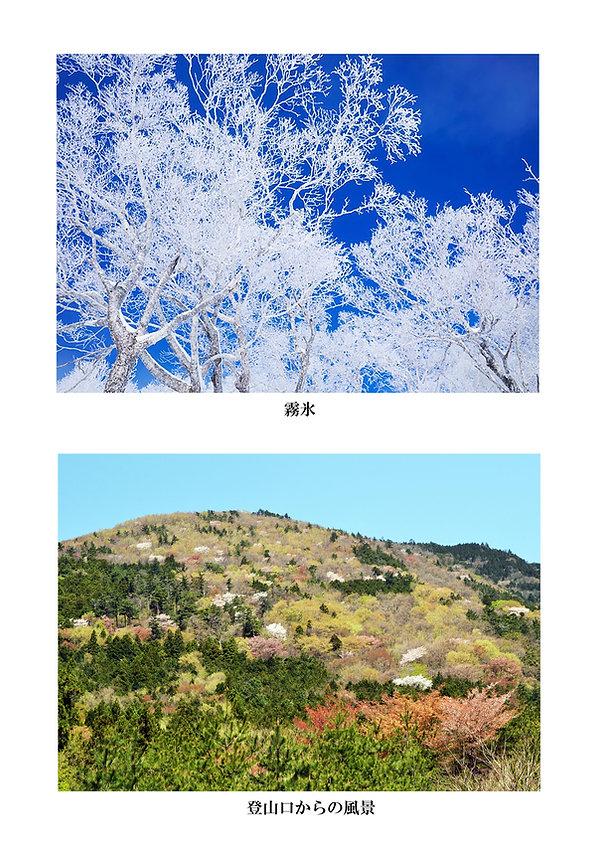 霧氷(パンフレット用).jpg