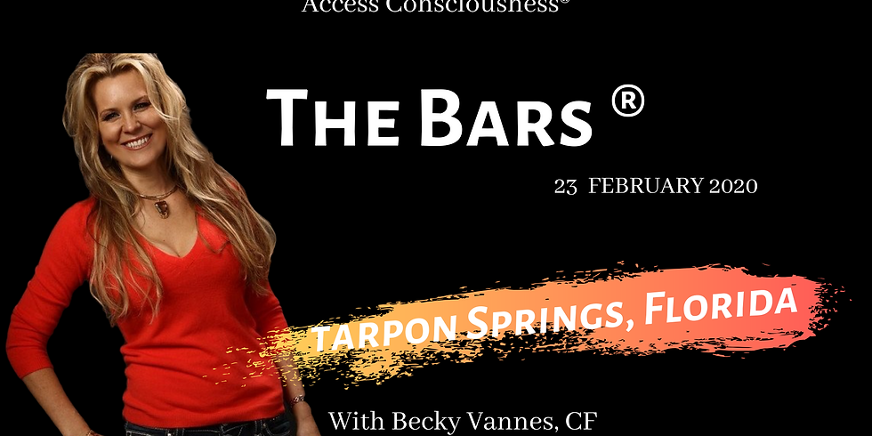 The Bars® Class-TARPON SPRINGS, FL