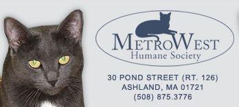 MetroWest Humane Society