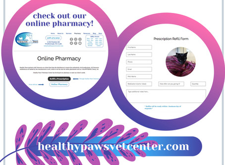 Healthy Paws Website