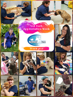 Vet Tech Appreciation Week