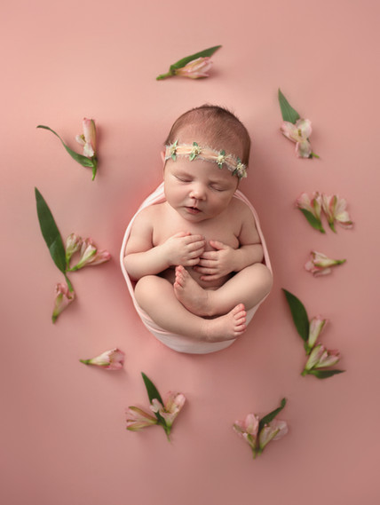newborn photography washington illinois