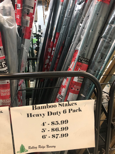 Bamboo Stakes - Heavy Duty 6 Pack
