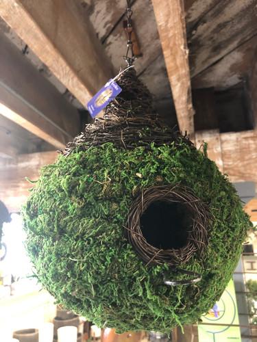 Moss Bird House Teardrop