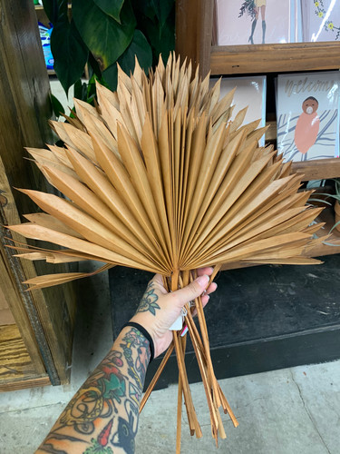 Rust Orange Palm