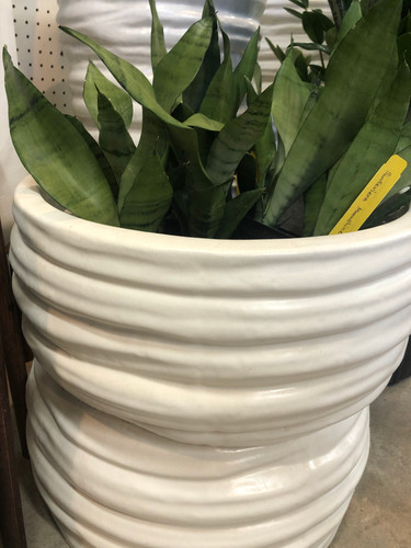 #31 Large pots asst sizes