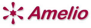 株式会社アメリオ