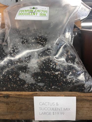 Large bag cactus and succulent soil