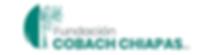 LOGO_FundacionCobachChiapas_Mesa de trab
