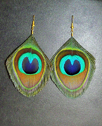 Peacock Feather Earrings Trim Gold Silver Plated