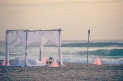 Noosa Picnics   Sunshine Coast Picnics   Sunshine Coast Proposals    Noosa Proposals   Sunshine Coas