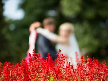 Как организовать свой свадебный день (советы молодоженам)