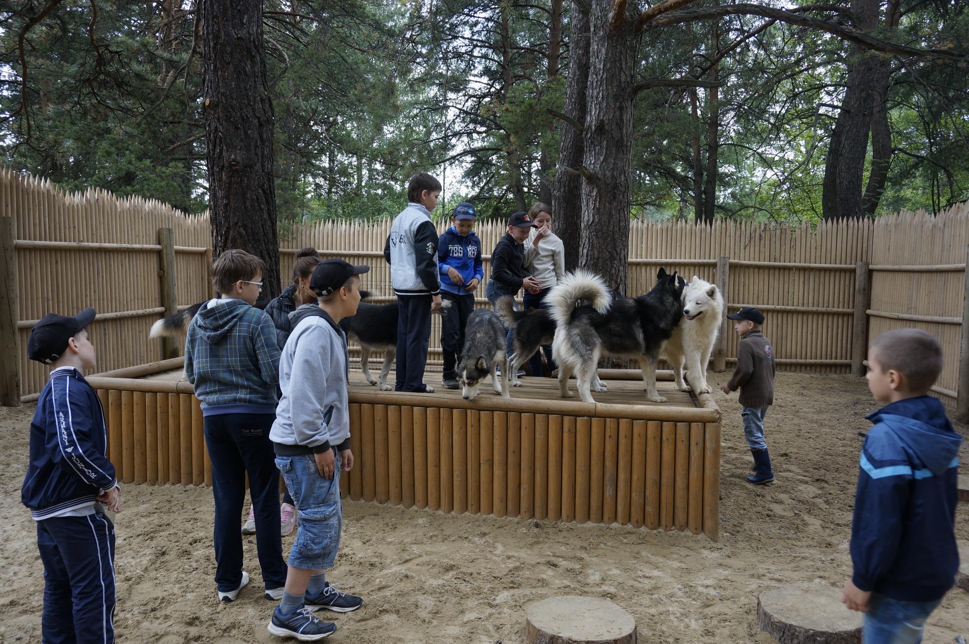Летний лагерь Урал Айкидо0155