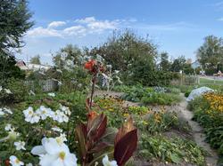 Garten in Algetshausen