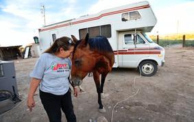 Bonnie McGrew and Her Horse